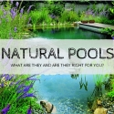 Natural Pools: What Are They and Are They Right for You?